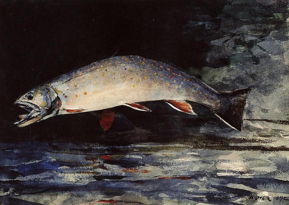 A Brook Trout by Winslow Homer (1836-1910, United States) | Art Reproductions Winslow Homer | ArtsDot.com