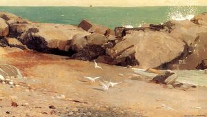 Winslow Homer - Rocky Coast and Gulls