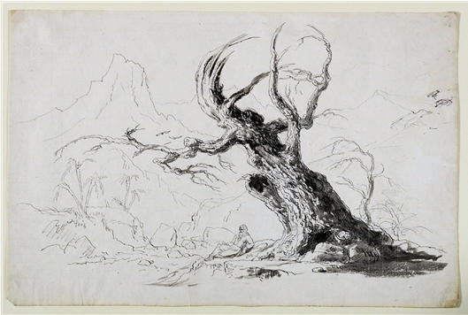 Large Gnarled Tree with Bearded Man Seated Below, Watercolour by Thomas Cole (1801-1848, United Kingdom)