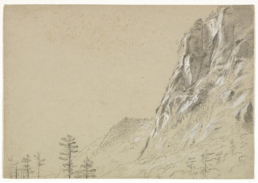 Tall Rugged Cliff and Tree, Illustration by Thomas Cole (1801-1848, United Kingdom)
