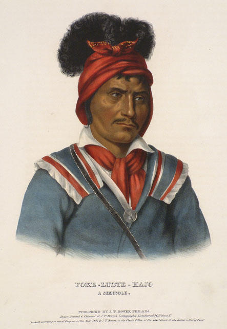 Foke-Luste-Hajo, A Seminole by Charles Bird King (1785-1862, United States) | Museum Quality Reproductions | ArtsDot.com
