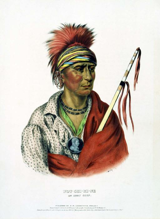 NOT-CHI-MI-NE. AN IOWAY CHIEF, Oil by Charles Bird King (1785-1862, United States)