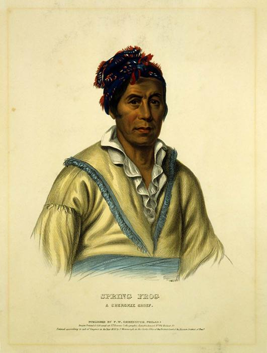 SPRING FROG. A CHEROKEE CHIEF, Oil by Charles Bird King (1785-1862, United States)