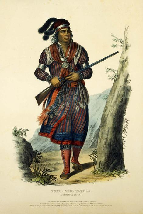 TUKO-SEE-MATHLA. A SEMINOLE CHIEF, Oil by Charles Bird King (1785-1862, United States)