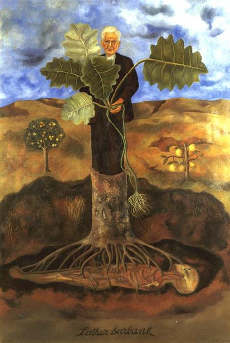 Luther Burbank, Oil by Frida Kahlo (1907-1954, Mexico)