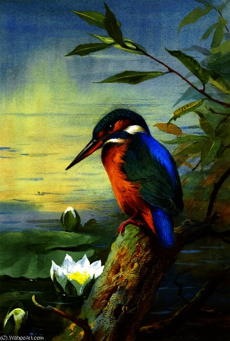 Kingfisher 1, Watercolour by Archibald Thorburn (1860-1935, United Kingdom)