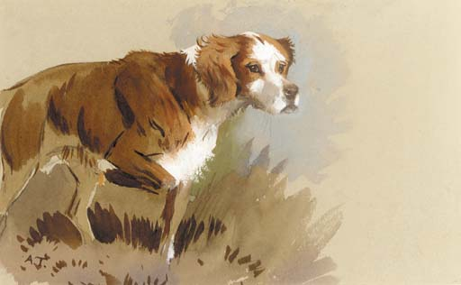 The Artist's Dog, Watercolour by Archibald Thorburn (1860-1935, United Kingdom)