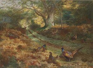 Archibald Thorburn - The Bridle Path