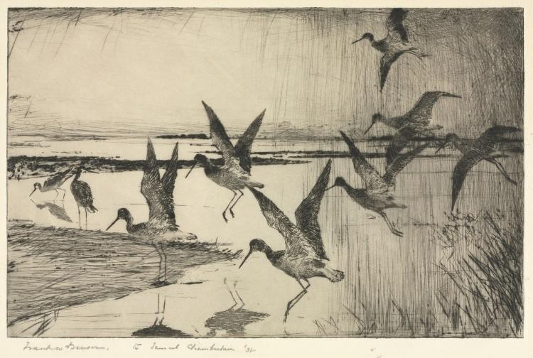Greater Yellowlegs, Etching by Frank Weston Benson (1862-1951, United States)