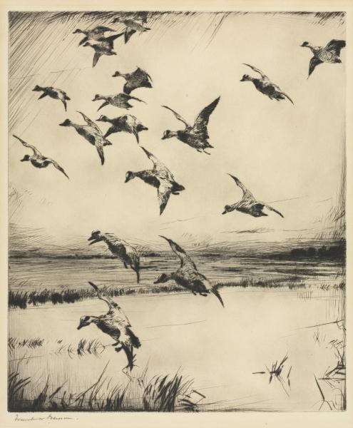 Here They Come!, Etching by Frank Weston Benson (1862-1951, United States)