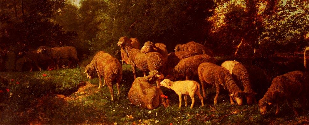 Sheep In The Sous-Bois, Drawing by Charles Émile Jacque (1813-1894, France)