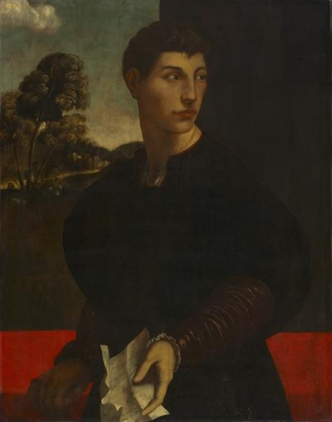 Portrait of a Young Man, Drawing by Dosso Dossi (Giovanni Di Niccolò De Luteri) (1486-1542, Italy)