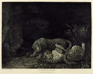 George Stubbs - Leopards at Play 1