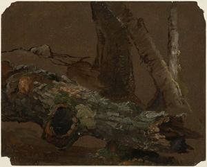 Jasper Francis Cropsey - Log and Lower Parts of Tree Trunks
