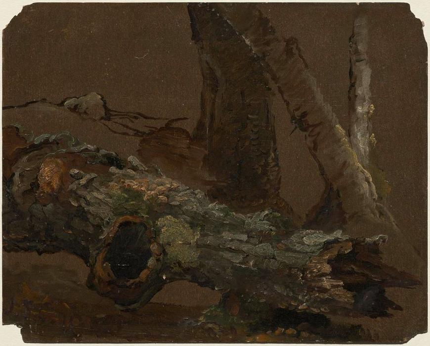 Log and Lower Parts of Tree Trunks by Jasper Francis Cropsey (1823-1900, United States) | ArtsDot.com