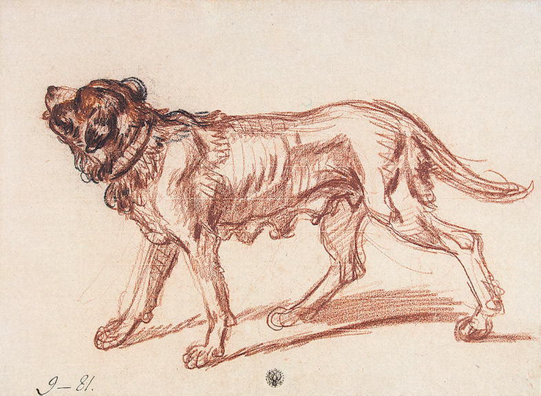 Study for 'The Paralytic'. Study of a Dog by Jean-Baptiste Greuze (1725-1805, France) | ArtsDot.com