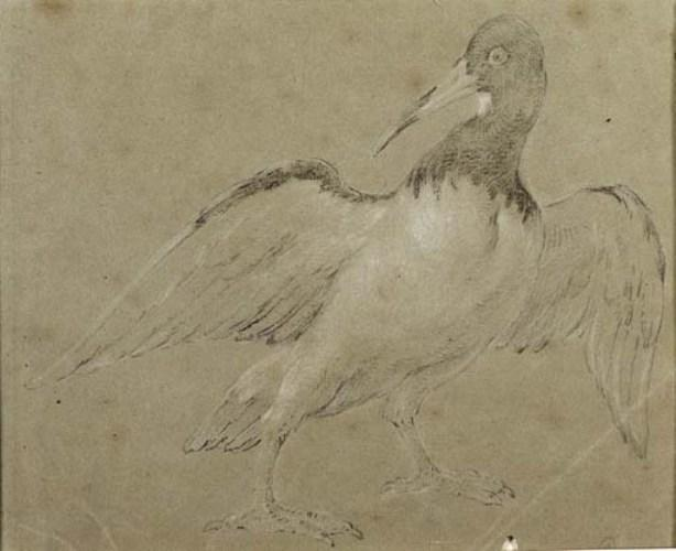 An Oyster Catcher by Jean-Baptiste Oudry (1686-1755, France) | Museum Quality Reproductions | ArtsDot.com