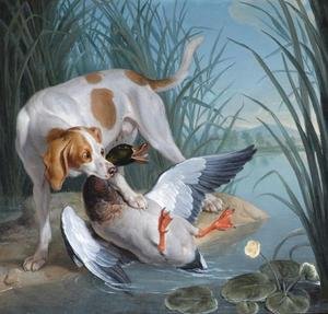 Jean-Baptiste Oudry - Dog and wild duck