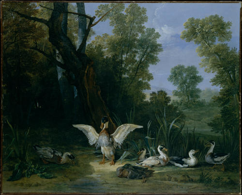 Ducks Resting in Sunshine by Jean-Baptiste Oudry (1686-1755, France)