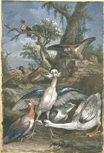 Eight birds in a landscape by Jean-Baptiste Oudry (1686-1755, France) | Museum Art Reproductions | ArtsDot.com