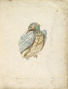 Jean-Baptiste Oudry - Perched Bird Looking over its Shoulder