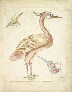 Jean-Baptiste Oudry - Standing Heron and Two Small Birds
