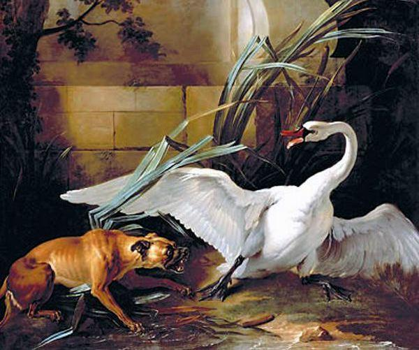 Swan Attacked by a Dog by Jean-Baptiste Oudry (1686-1755, France) | Art Reproduction | ArtsDot.com
