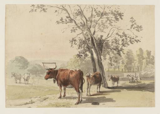 Cows in a Park by Paul Sandby (1798-1863, United Kingdom)