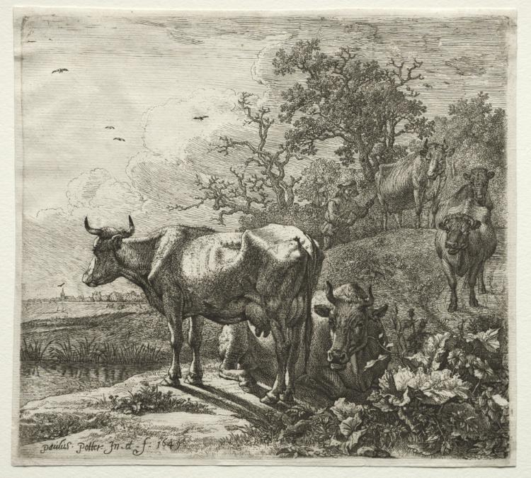 The Cowherd by Paulus Potter (1625-1654, Netherlands) | ArtsDot.com