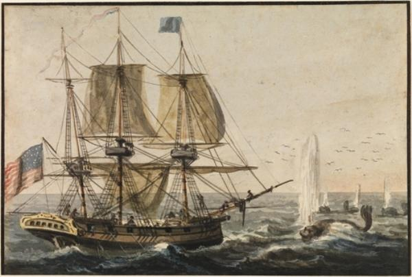 Replenishing the Ship`s Larder with Codfish off the Newfoundland Coast by Pavel Petrovich Svinin (1787-1839, Russia) | Museum Quality Reproductions | ArtsDot.com