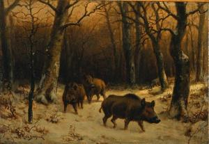 Rosa Bonheur - Wild Boars in the Snow