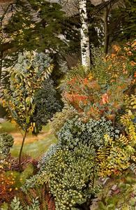 Stanley Spencer - Garden Scene. Port Glasgow