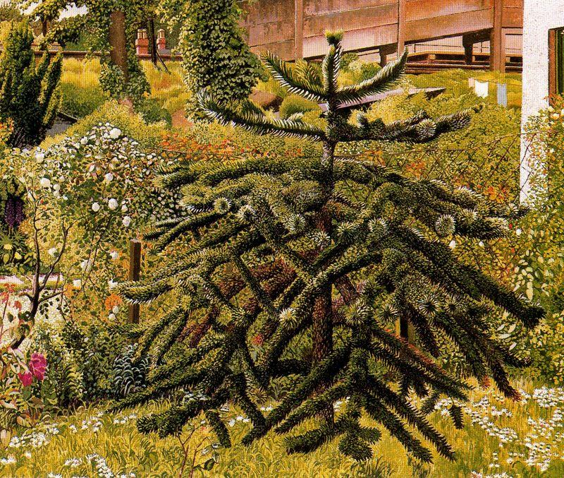 The Monkey Puzzle. Whitehouse. Northern Ireland by Stanley Spencer (1891-1959, United Kingdom)