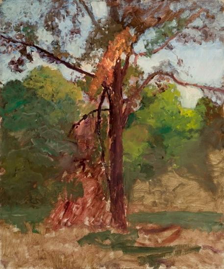 A Tree by Theodore Clement Steele (1847-1926, United States) | ArtsDot.com