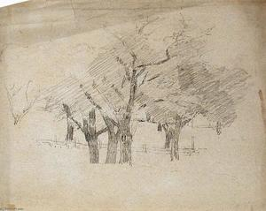 Theodore Clement Steele - Trees