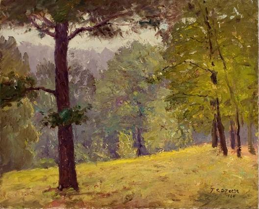 Untitled (Heavily Wooded Slope) by Theodore Clement Steele (1847-1926, United States) | Museum Art Reproductions | ArtsDot.com