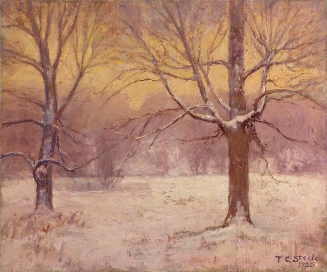 Winter Afternoon, Jordan Field by Theodore Clement Steele (1847-1926, United States)
