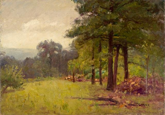 Woodland Scene (Midsummer Afternoon) by Theodore Clement Steele (1847-1926, United States) | Museum Quality Reproductions | ArtsDot.com