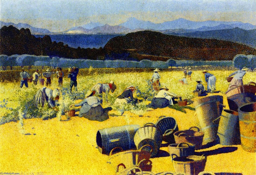 Grape Harvest (var), Oil On Canvas by Henri Edmond Cross (1856-1910, France)