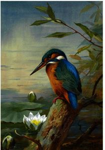 Archibald Thorburn - Kingfisher