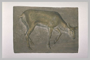 Jacopo Bellini - Sketch of deer doe