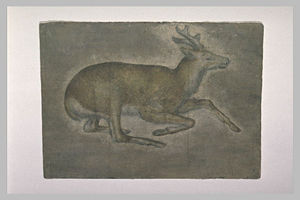 Jacopo Bellini - Sketch of young deer