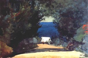 Winslow Homer - Road in Bermuda
