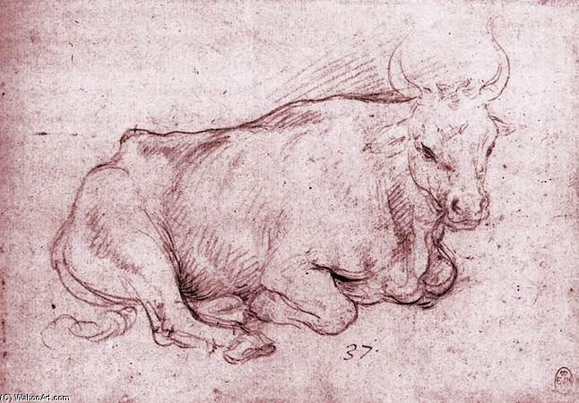 Seated Bull by Cesare Da Sesto (1477-1523, Italy) | Art Reproduction | ArtsDot.com