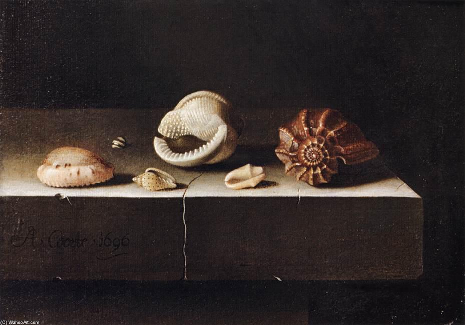 Five Shells on a Slab of Stone, Wood by Adriaen Coorte (1665-1707, Netherlands)