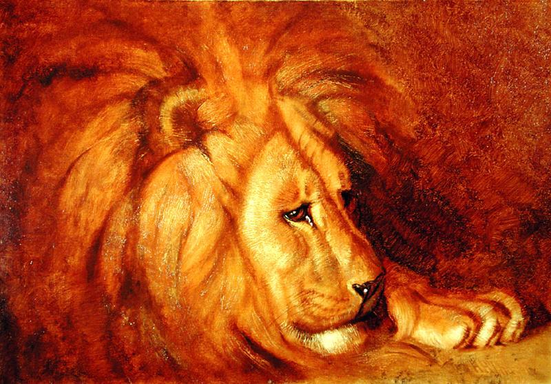 Lion at Rest by Abbott Handerson Thayer (1849-1921, United States)