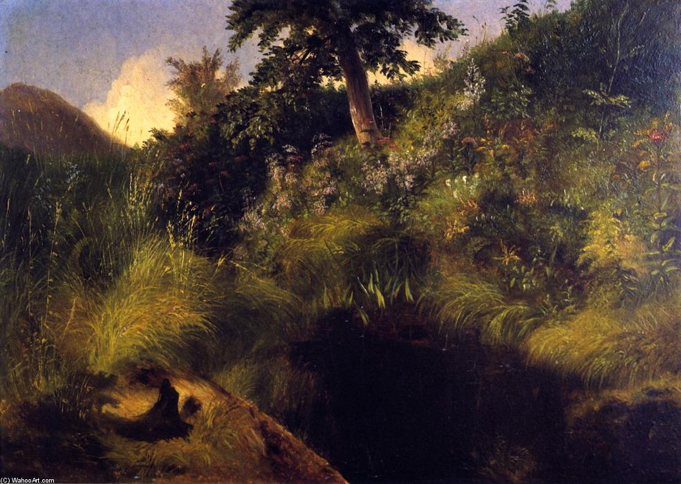 The Old Bog Hole, 1856 by Louis Remy Mignot (1831-1870, United States) | Museum Art Reproductions | ArtsDot.com