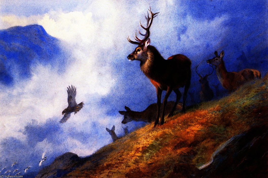 Red Deer Watching a Golden Eagle Hunt Ptarmigan, Watercolour by Archibald Thorburn (1860-1935, United Kingdom)