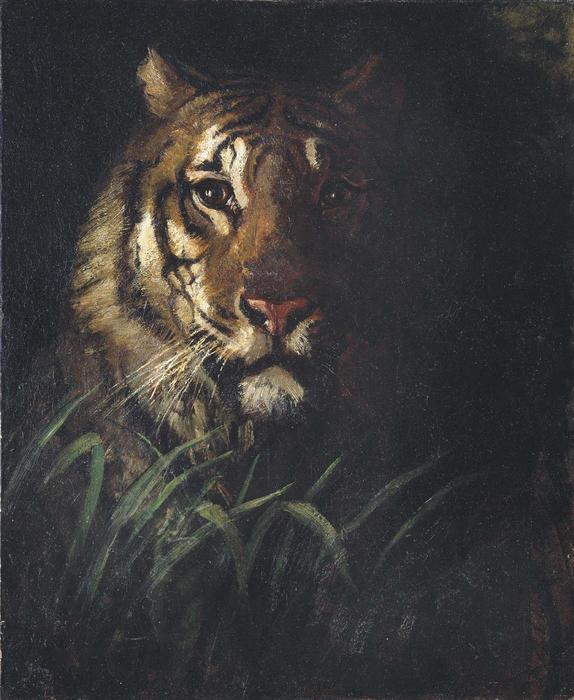 Tiger's Head, Oil On Canvas by Abbott Handerson Thayer (1849-1921, United States)