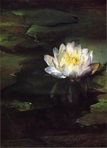 John La Farge - Water-Lily, Study from Nature